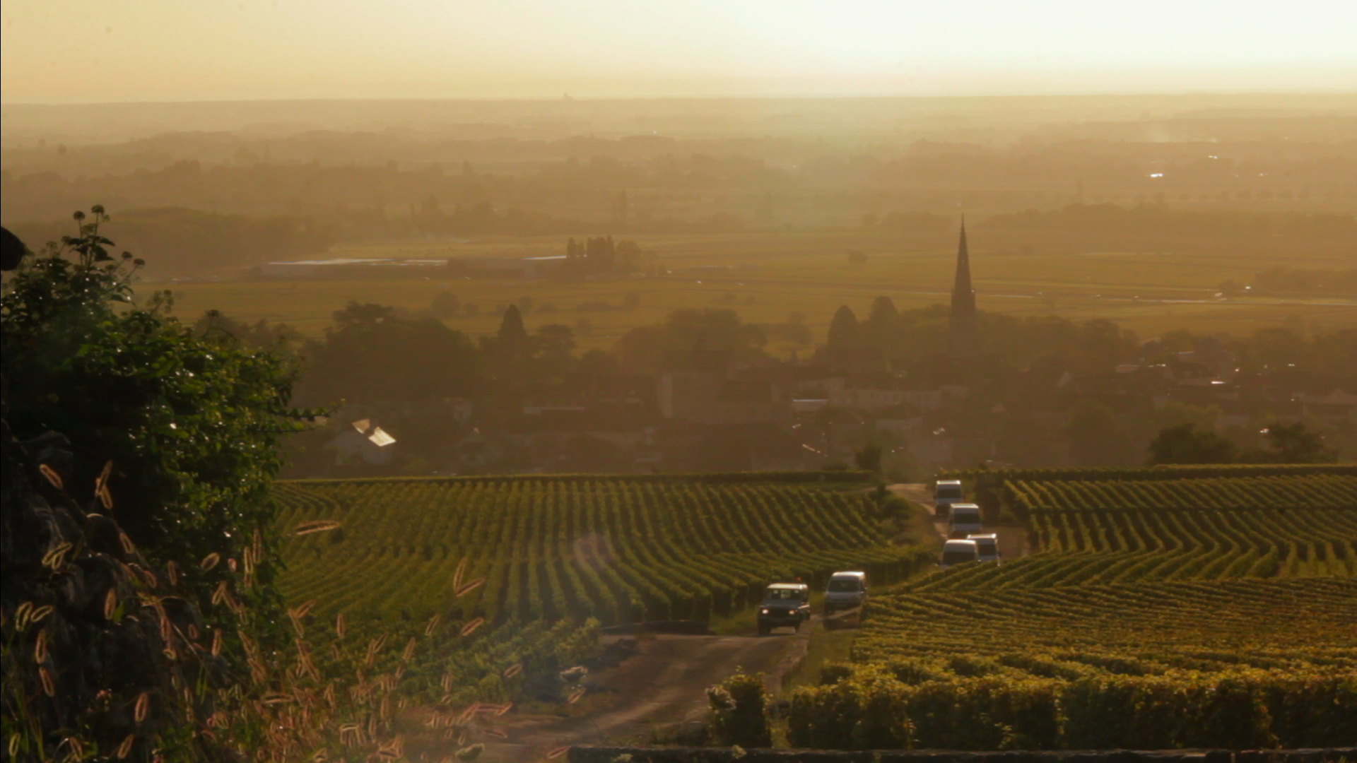 a year in burgundy – documentary | the french wench